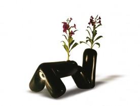Position plants